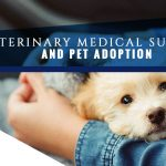 Veterinary Medical Supplies and Pet Adoption