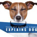 explain-doga