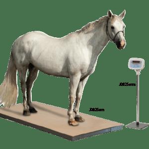 Jorvet Equine Platform Scale