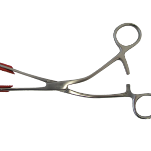 Young Tongue Forceps