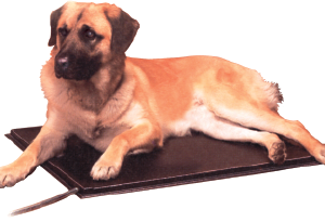 Deluxe Lectro Kennel, Large
