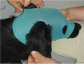VetMed Care Leg/Head Extremity Protection Set