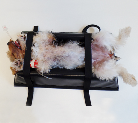 K 9 Ez Boy Radiographic Positioning Aid Covered Small