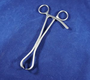 Twin Point Fragment Forceps,  Straight Tip
