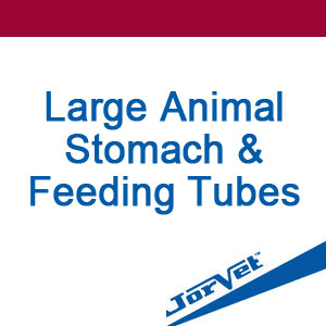 Large Animal Stomach & Feeding