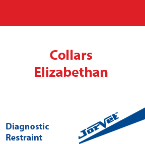 Collars, Elizabethan