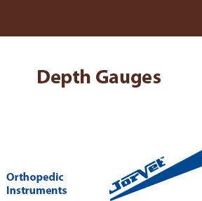 Depth Gauges