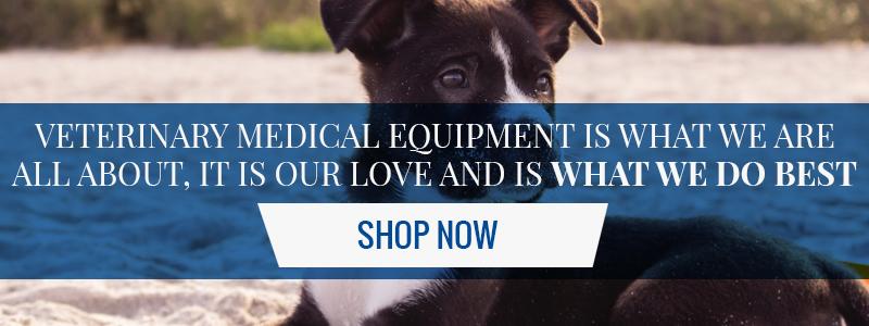Vet Supplies: Finding A Pet SitterJorgensen Labs